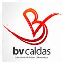bv-caldas